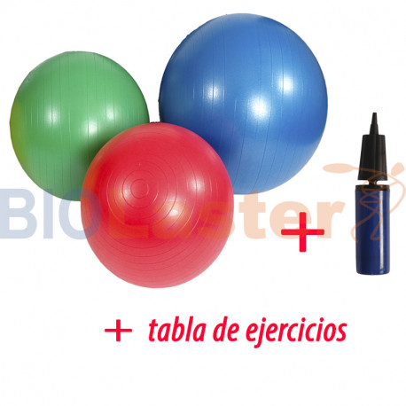 MSD Pack Fitball